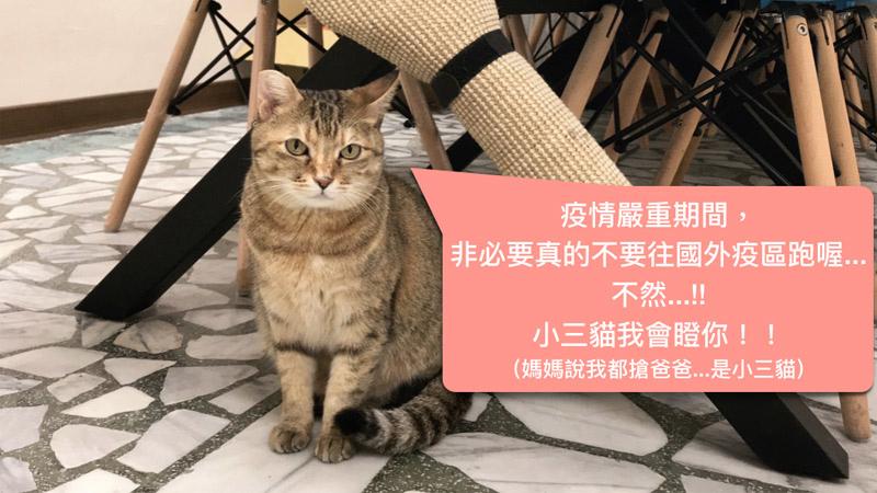 2019武漢肺炎和新冠狀病毒我在台灣防疫中學會的幾件事情.jpg